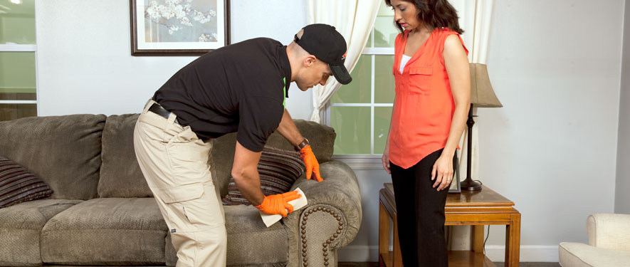 Plainfield, IL carpet upholstery cleaning
